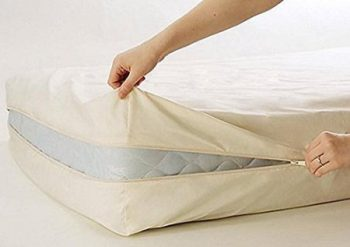 Bed-Bug-Mattress-Protector
